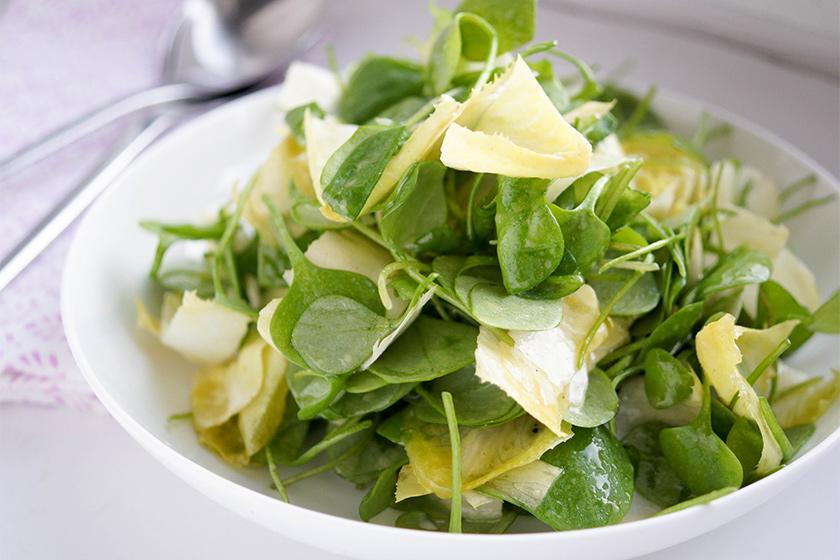 Chicorée (Belgische Endivien) und Postelein Salat