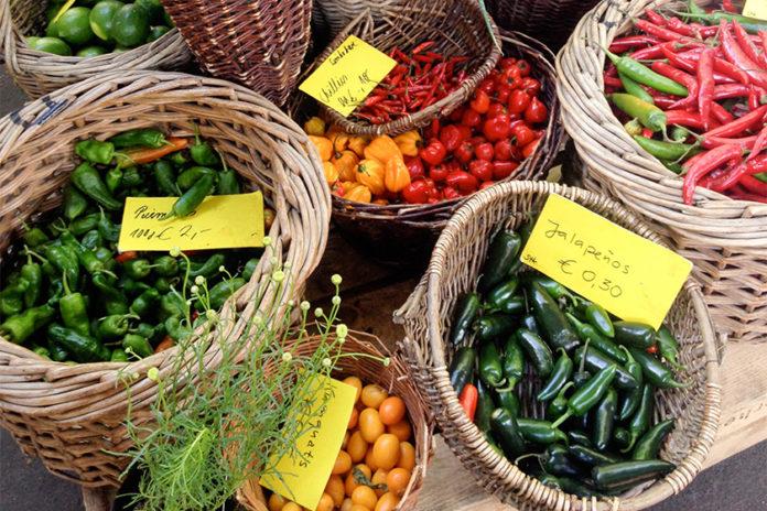 Der Chili, auch als Paprika, Pfefferoni oder Pepperoni bezeichnet.