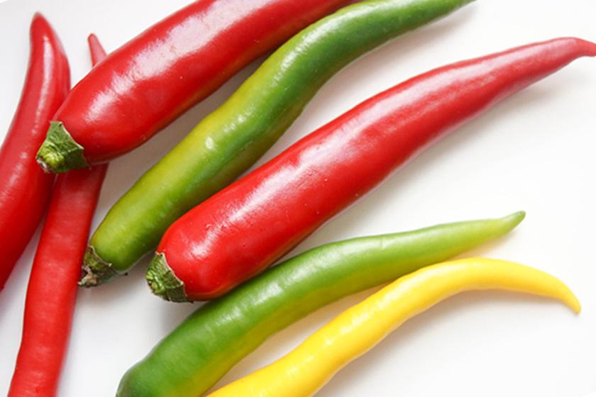 Der Chilischoten, auch als Paprika, Pfefferoni oder Pepperoni bezeichnet.