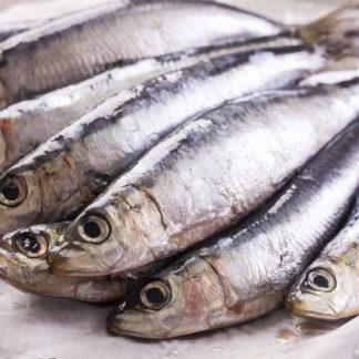 Umami, Sardellen, 5. Geschmack, asiatisch, japanisch, Fisch, Glutamat, Glutamin