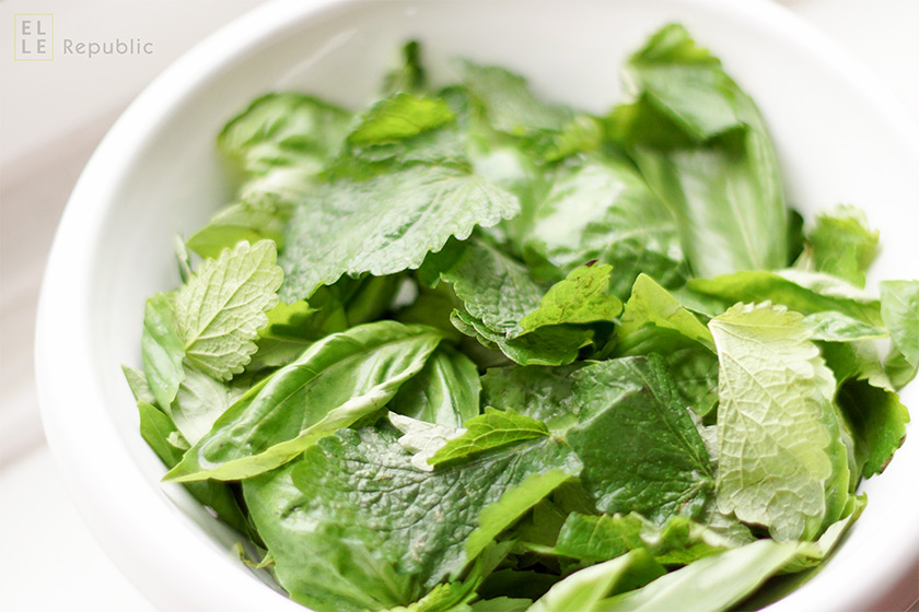 Blätter der Zitronenmelisse und Basilikum