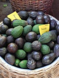 Avocados auf dem Markt