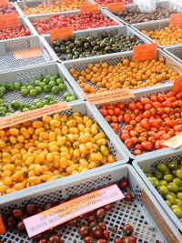 Sommer-Tomaten auf dem Markt