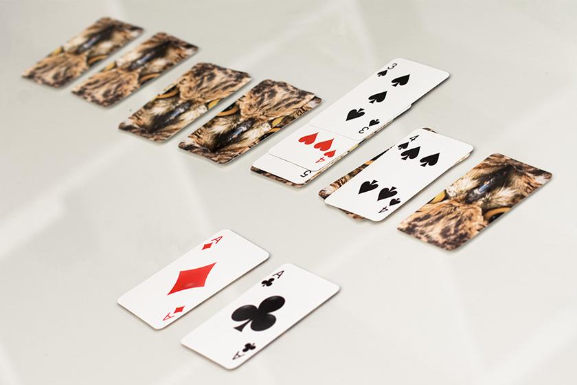 Spielkarten Prentu