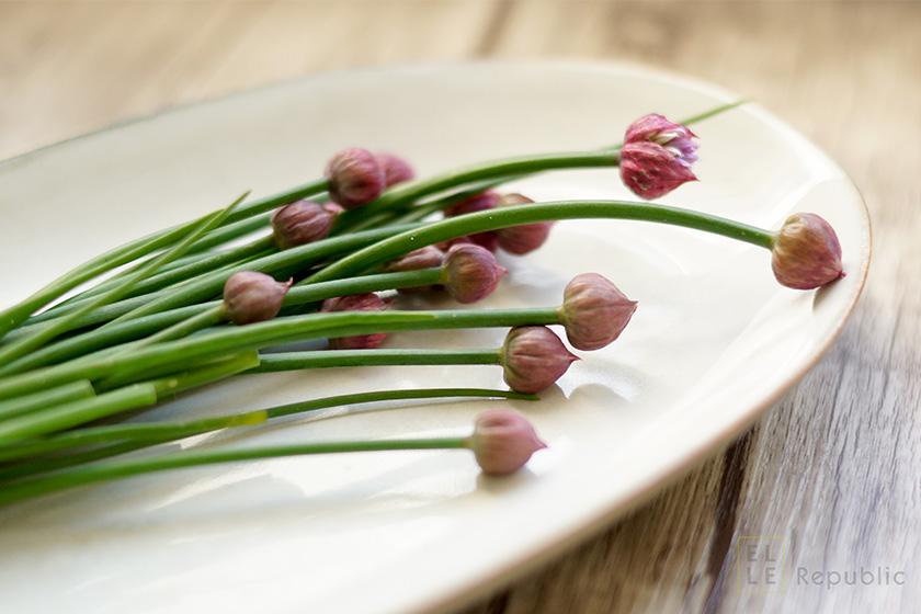 Schnittlauch Blüten - Blumen zum Essen