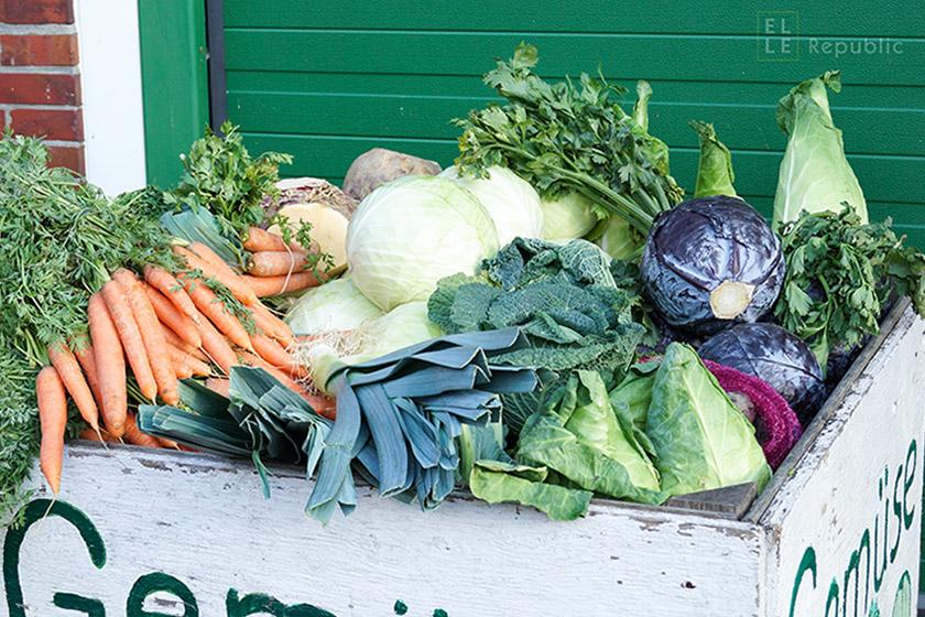 7 Gründe regionale und saisonale Produkte zu kaufen wintergemüse