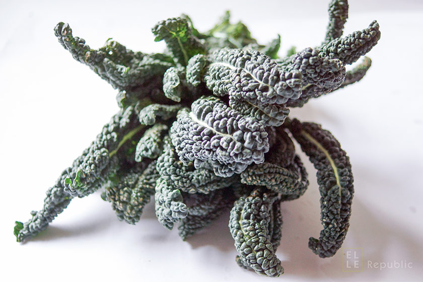 Schwarzkohl Toskanischer Palmkohl 'Nero di Toskana' Lacinato kale, dinosaur kale