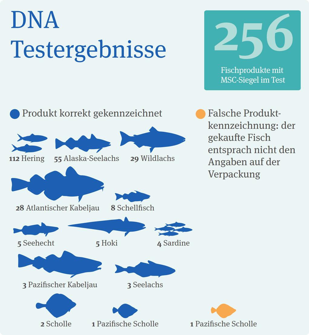 DNA-Testergebnisse Fische, Quelle MSC