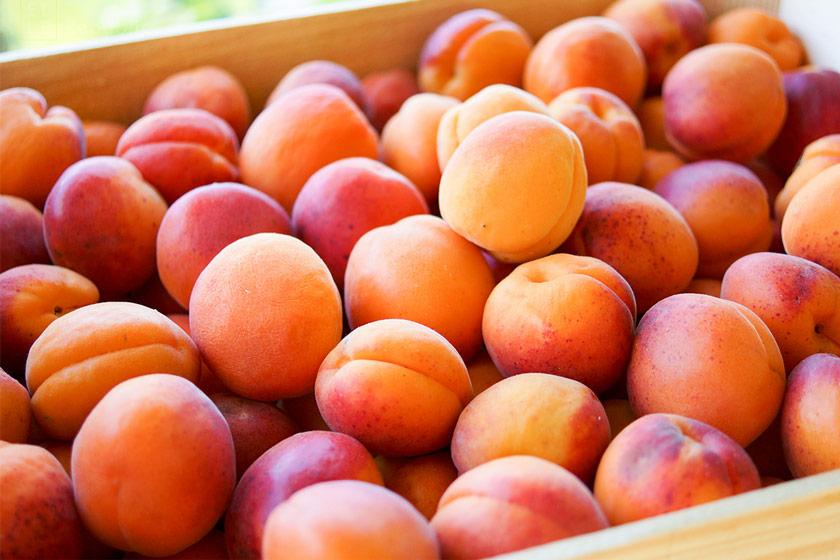 süßen und saftigen Aprikosen für Aprikosen-Couscous-Salat Rezept