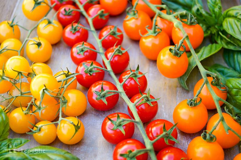 Frische Cherrytomaten, Alte Tomatensorten für Linsensalat mit gerösteten Tomaten