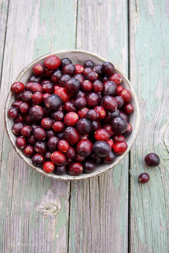 Cranbeeren, Cranberry, Moosbeere