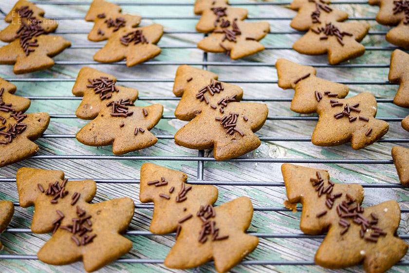 Lebkuchen Rezept zu Weihnachten (kanadisches Gingerbread)