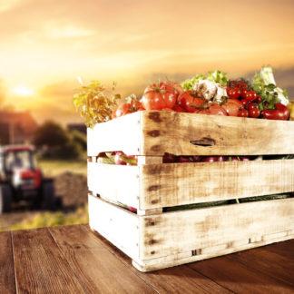 Gemüse und Sonnenuntergang für Mit Slow Food gesünder leben