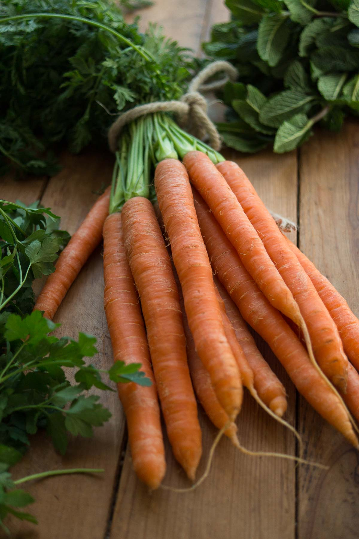 Frische Karotten und Kräuter